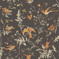 Papier Peint   Cole And Son   Hummingbirds   Marron Et Orange