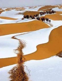 MERZOUGA quand il neige sur les dunes Février 2015