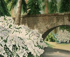 Bridge at Manito Park  Limited Edition by CSchmauderWatercolor,