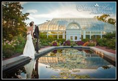 toledo zoo formal gardens | Posted in Weddings Tags: Toledo Zoo , Weddings