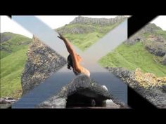 Yoga nidra meditation for living