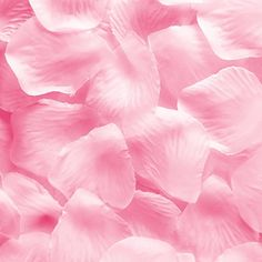 Silk Fabric Flower Mini Rose Petals for Weddings 1000 Pieces Pink -- Click image to review more details.
