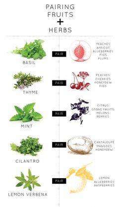 Need help pairing herb flavor with your fruits this summer? Use this chart as a guide.