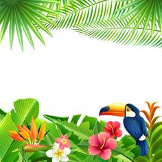 Buy Tropical Landscape Background by macrovector on GraphicRiver. Tropical landscape background with toucan bird and flowers frame vector illustration. Tropical Party, Tropical Vibes, Tropical Flowers, Cartoon Background, Vector Background, Images Jungle, Flamingo Party Supplies, Jungle Theme Birthday, Landscape Background