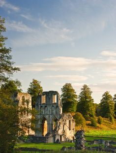 wanderthewood: Roche Abbey, South Yorkshire, England by CLIFFWALKER on Flickr