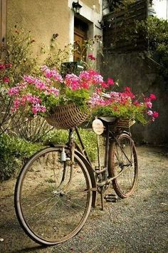 Vintage bicycle - baskets of flowers front and back. via The Basket Bike Girl®