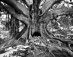 El asombroso surrealismo fotomanipulado de Thomas Barbèy   OLDSKULL.NET