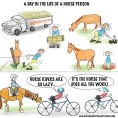 A day in the life of a horse person...