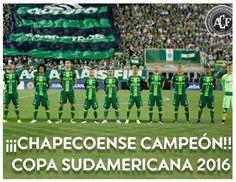 BLOG DO MARKINHOS: Conmebol declara Chapecoense campeã da Copa Sul-Am...