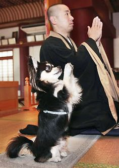 NAHA, Japan — At a Zen Buddhist temple, even the dog prays.  Mimicking his master, priest Joei Yoshikuni, a   black-and-white Chihuahua named Conan joins in the daily prayers at Naha's Shuri Kannondo temple, sitting up on his hind legs and putting his front paws together before the altar.