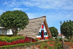Depositphotos_28166595_l-2015 (1) Old Cottage, Funchal, Koi, Cottages, Image Search, Home Goods, Portugal, Pastel, Cabin