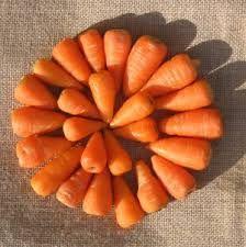 carrots - Google Search