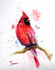Watercolor bird painting red cardinal art red decor by SignedSweet