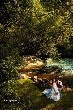 Wedgewood on Boulder Creek