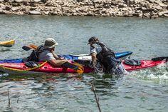 kayaking essentials re-entry kayak paddling