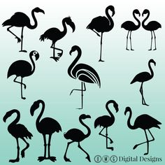 12 Flamingo Silhouette Digital Clipart Images by OMGDIGITALDESIGNS