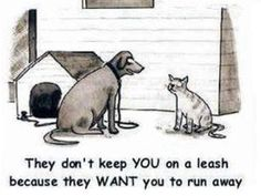 "❤ ""They don't keep YOU on a leash because they WANT you to run away."""