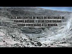 El Mandato Minero emitido por la Asamblea Constituyente (2008) prohibe concesiones mineras en fuentes de agua y zonas protegidas.