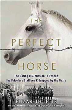 The Perfect Horse: The Daring U.S. Mission to Rescue the…