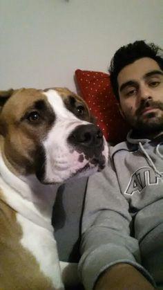 Ciao io sono margot #amstaff #cane