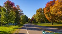 A left over foliage picture from last month. Fall foliage at the Bread Loaf Campus. Part of Middlebury College in Middlebury Vermont  2017 Calendars are still only $14.99 each.  Purchase them here-http://bit.ly/2ekeRTy  Feel free to visit my website - http://ift.tt/2aTNg7U   #foliage #fallfoliage #vermont #newenglandphotography #newengland #landscape #newengland_photography #ScenicVermontPhotography #ScenicVermont #VT #welovermont