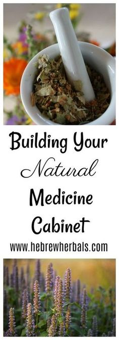 Get your own natural, herbal medicine cabinet started today. Here are the top 5 herbs that are most common, and they are all able to multi-function! Check them out here. www.hebrewherbals.cm