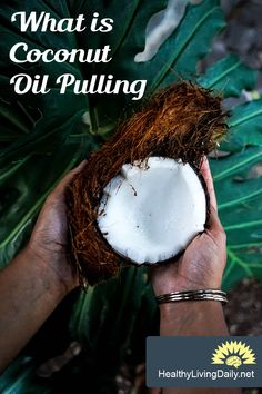 What You Need to Know About Coconut Oil Pulling 😬🙀👍  Read this article to find out how coconut oil pulling can improve the health of your teeth and gums.   #coconutoil #coconutoilpulling #oilpulling #healthyteeth #teethhealth #teethcare #oralcare #healthylivingdaily #followme #follow