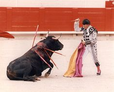 Stream The Dance of Death by Maria Daines from desktop or your mobile device Stop Bulling, Horrible People, Dance Of Death, Dog Fighting, Real Facts, Love And Respect, Animal Rights, Creatures, Spain