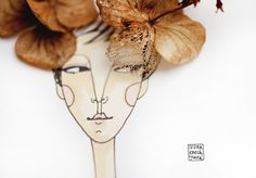Hydrangea, illustration by Ivona Knechtlova