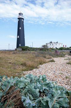 Dungeness, Romney Marsh and Rye Bay - UK