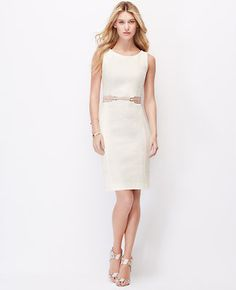 Ann Taylor Textured Sheath Dress & Corset Belt