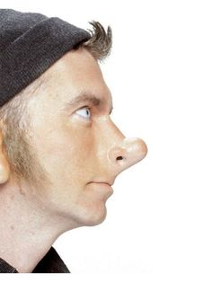 Check out Who Knows Prosthetic Nose - Wholesale Makeup Kits from Wholesale Halloween Costumes