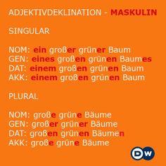 Masculine adjective declination