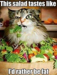 This salad tastes like...I'd rather be fat.