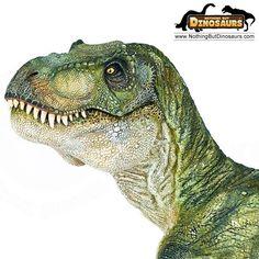 Dinosauriërs - Google Search