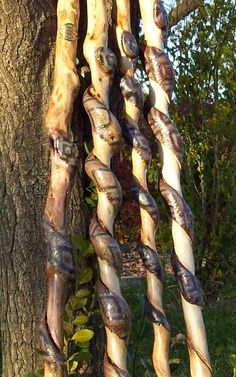 Snakes Carved