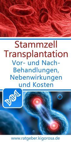 Stammzelltransplantation - Vor- und Nachbehandlungen, Nebenwirkungen und Kosten - Die Stammzelltransplantation ist eine medizinische Methode, die schon vielen tausenden Patienten bei sehr schweren Erkrankungen helfen konnte. Doch obwohl sie mittlerweile ein medizinischer Routineeingriff ist, gibt es durchaus schwerwiegende Risiken und viele kleine Schritte in der Vor- und Nachbehandlung einer Transplantation von Stammzellen, die man berücksichtigen muss. Routine, Baby, Biology, Medicine, Baby Steps, First Aid, Health, Baby Humor