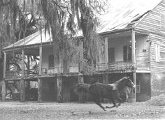Iberia Parish, near New Iberia. Built 1813 by Francois Darby. Burned in February, 1979. On the National Register of Historic Places.General Interest Collection--Plantations (from the Louisiana Tourist Development Commission.