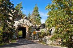 Peter Norbeck Scenic Byway in Custer State Park