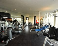 Home Gym Design, Pictures, Remodel, Decor and Ideas - page 14