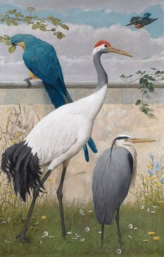 """Henry Stacy Marks - 1829 1898 - Manchurian Crane, a Blue Heron, Kingfisher and a Macaw - Odd but beautiful bird compositions from the Victorian / British Arts & Crafts period. - Apparantly from a series of 12 painted panels for an 1890's """"Ante-Drawing room"""". Eaton Hall, Cheshire"""