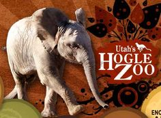 FREE Admission Days in UTAH for Hogle Zoo, Living Planet Aquarium, Red Butte Gardens and more