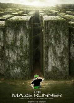 O no it's the worst combination o.o Zoro and a maze.....Goodbye Zoro...