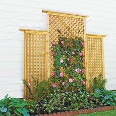 DIY Trellis - I could really use this for my climbing rose bush.  That thing is growing crazy fast!