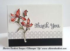 Stampin' Up! stamp set,  Backyard Basics & mataching framelits; Sharon Burkert