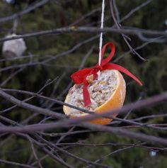 A littel christmas-snack for the birds, made by left overs in 10 min. - Meiseboller av det du har i skapet og julebord i hagen, se på bloggen.