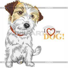 Perro dibujo Jack Russell Terrier raza | Ilustración vectorial de stock | ID…