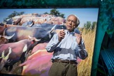 How Cows Could Repair the World: Allan Savory at TEDspac