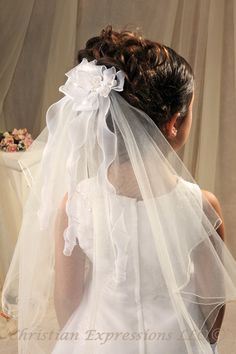 Image detail for -Janet First Communion Veil