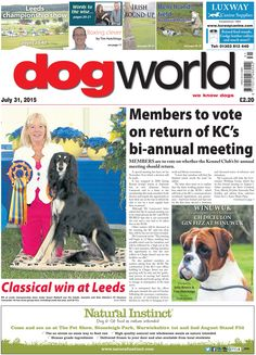 This week's DOG WORLD newspaper #dogs #news #July31 #dogshows #dogshowing